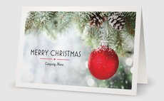 Personalized holiday cards designs business holiday cards 5 x 7 folded reheart Images
