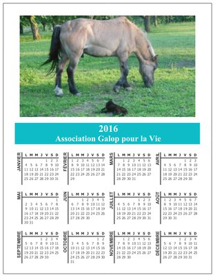Calendriers aimantés 2016  Preview?width=312&instructions_uri=http%3a%2f%2fservices.vistaprint.com%2fsales%2fdocuments%2fpreviewing%2foriondocsignature