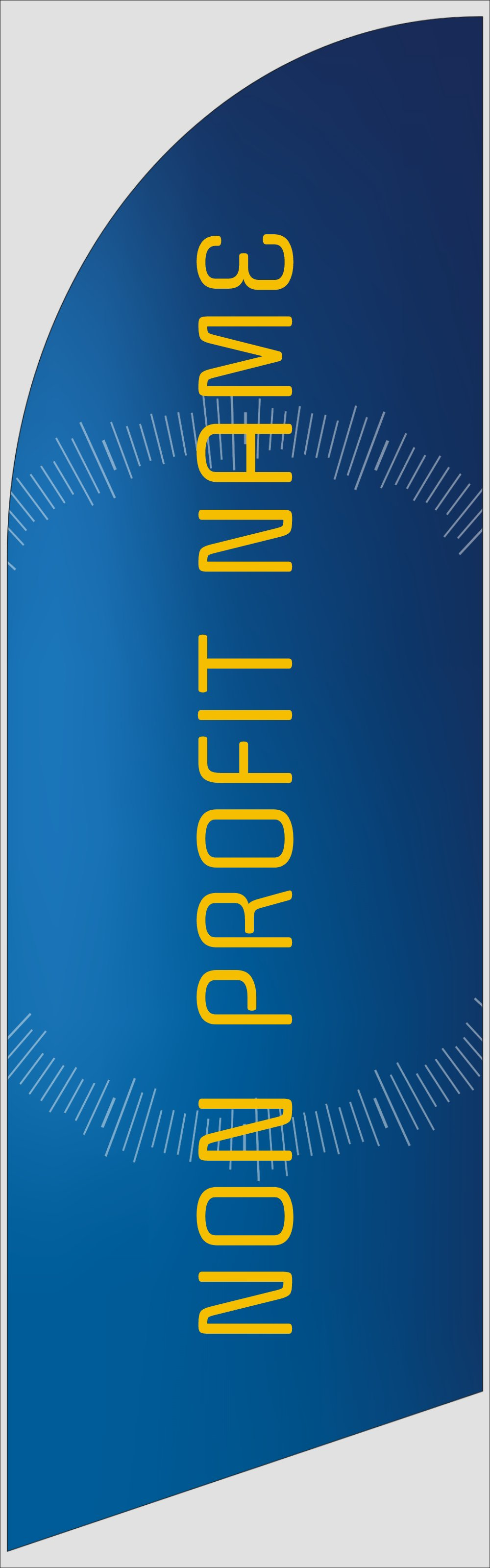 Picture of Non-Profit 1