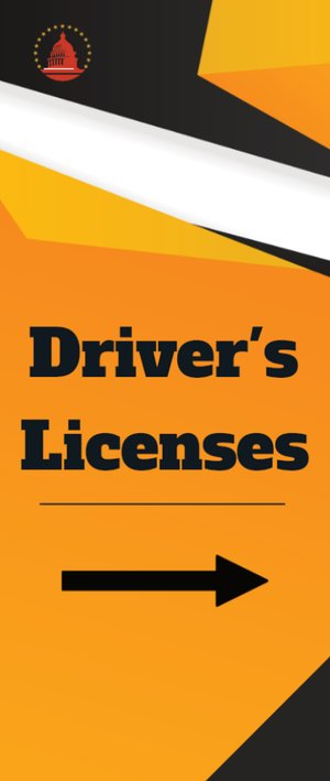 Picture of Government Driver's License 2