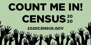 Picture of Census 3