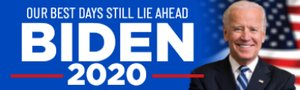 Picture of Political Bumper Sticker 2