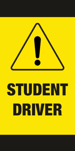 Picture of Student Driver 8