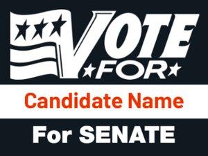 Picture of Senate 8