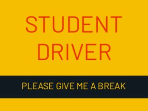 Picture of Student Driver 7