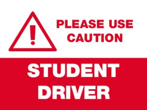 Picture of Student Driver 5