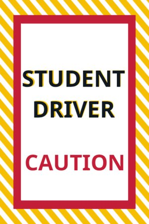 Picture of Student Driver 4